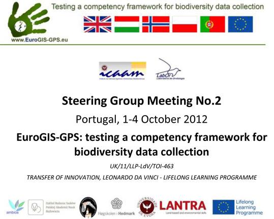 Steering Group Meeting No.2
