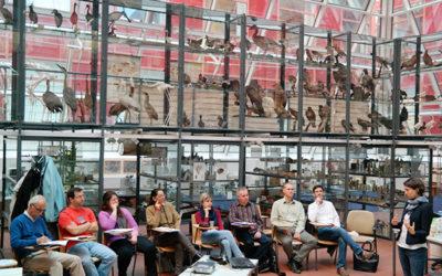 Reunião de projecto ERASMUS+ em Budapeste
