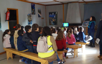 Environmental education: birds and the regeneration of the montado