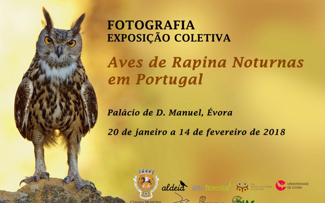 """Exposição de fotografia """"As aves de rapina nocturnas em Portugal"""""""