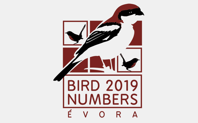 EBCC Conference Bird Numbers 2019